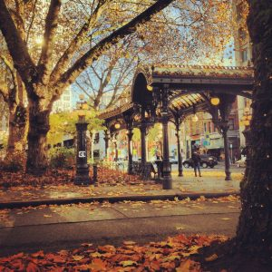 smith-tower-seattle-pioneer-square-pergola-fall-full-size